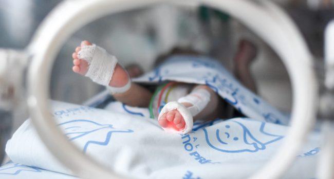 pesquisa_covid_afeta_placenta_gravidas-_capa-1-1536x1025